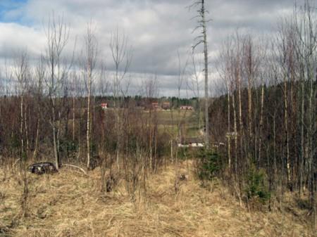 Utsikt från Gransättra