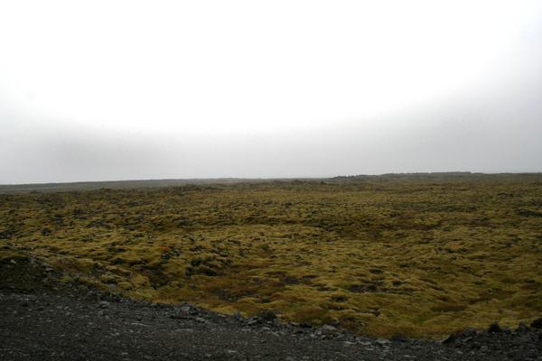 Lavafält på Reykjanes
